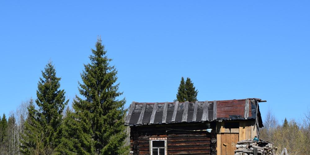 Работа: В дальней деревушке На лесной опушке Дом стоит кособокий