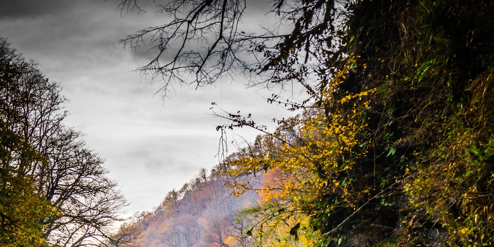 Работа: Осенний водопад