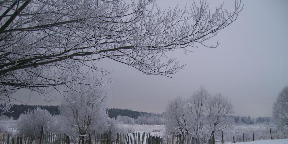 Работа: Снежности краюшка