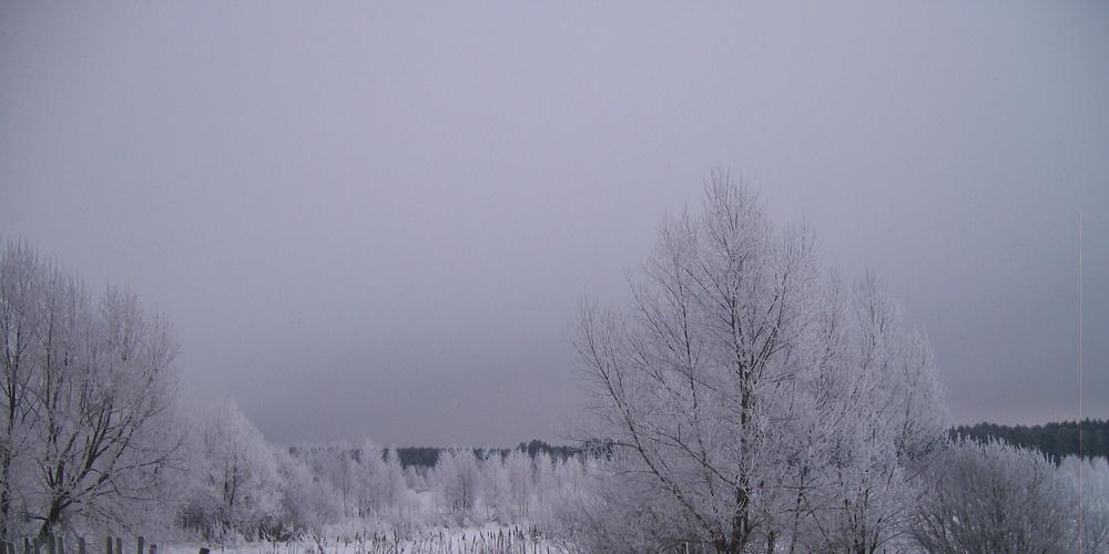 Работа: Снежность