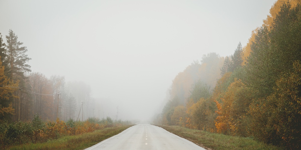 Работа: «А я еду, а я еду за туманом...»
