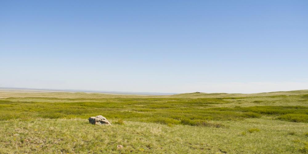 Работа: Широкая и бесконечная степь Казахстана