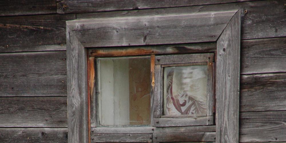 Работа: Кот в окне