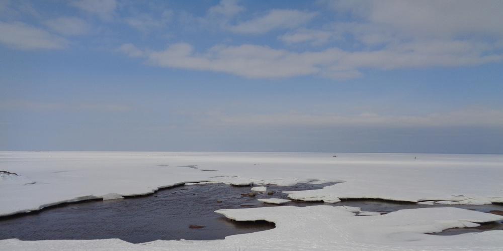 Работа: Финский залив
