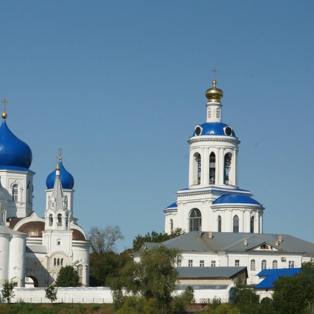 Работа : Свято-Боголюбский монастырь