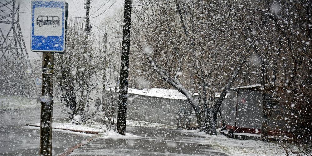 Работа: Майский снег