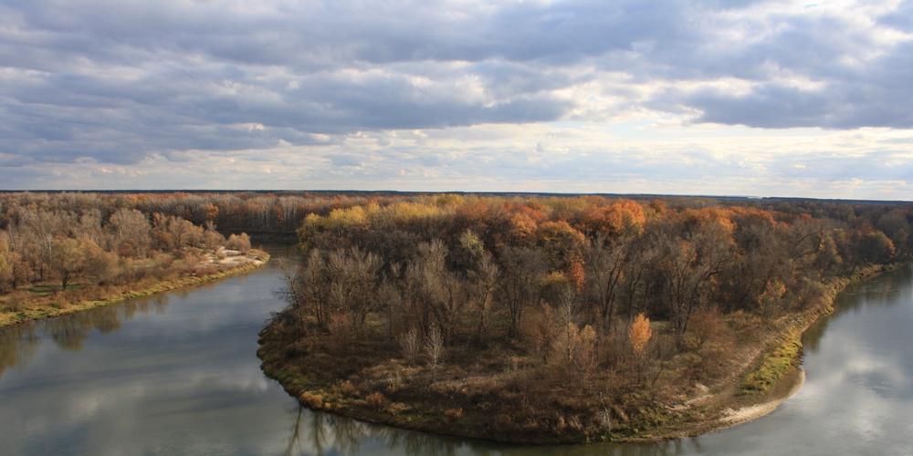 Работа: Река Хопер осенью. 2017 г.