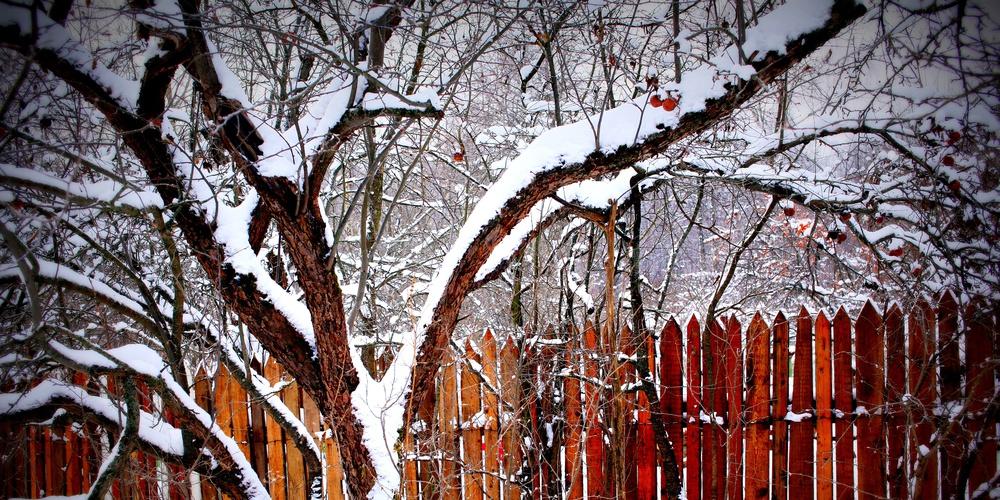 Работа: Зима. Прогулка.