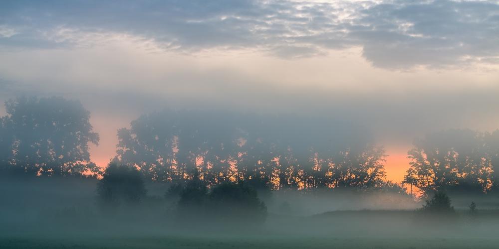 Работа: Рассветный туман на Нерли