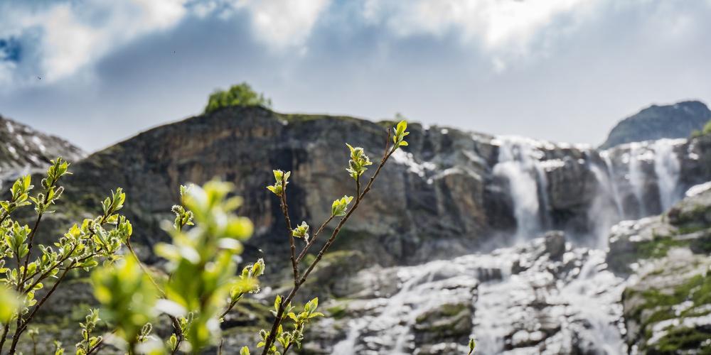 Работа: Софийские Водопады