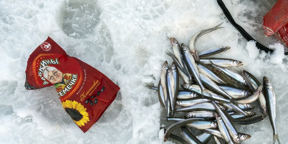 Работа: Icefishing