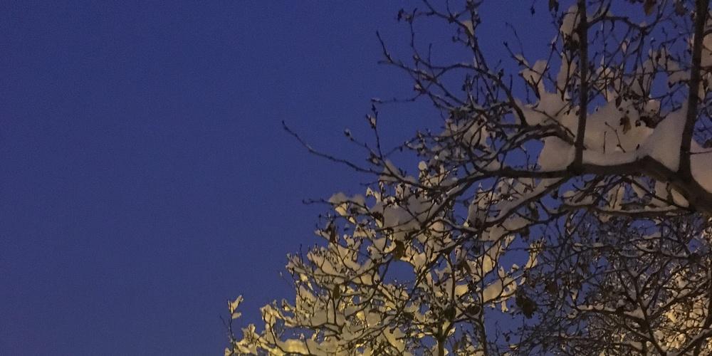 Работа: Заметает зима, заметает...