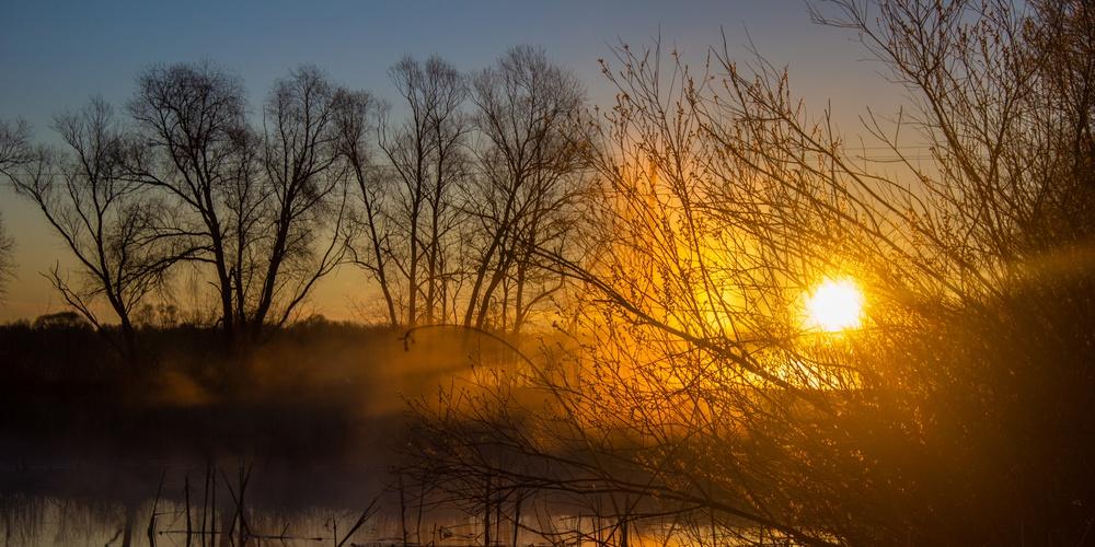 Работа: Туманный рассвет над рекой
