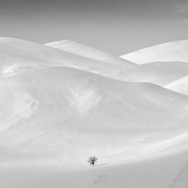 Работа : Замерзшие дюны