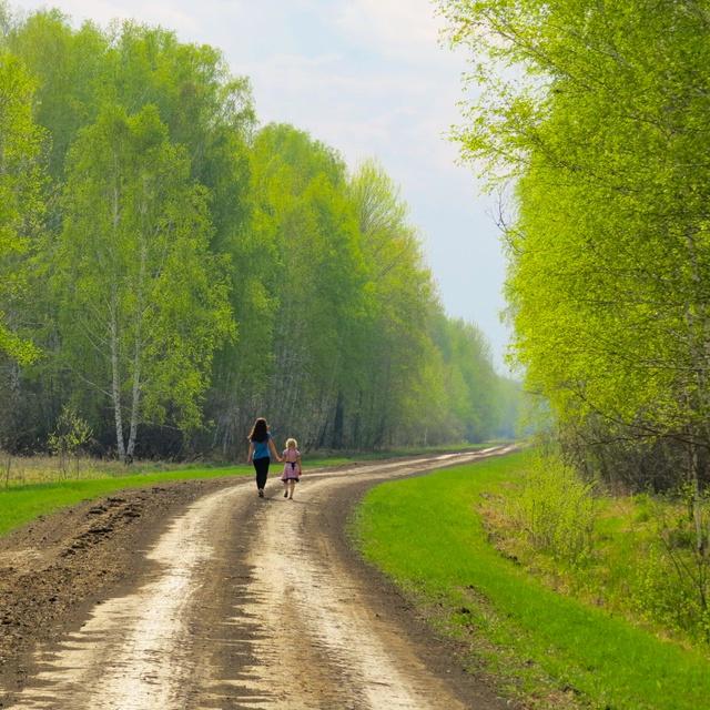 Работа : по лесной дорожке