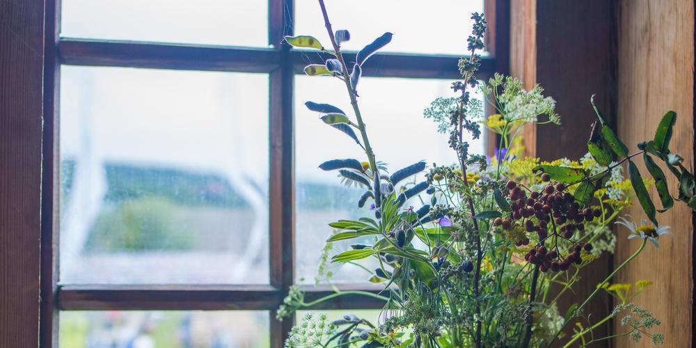 Работа: Цветы на окне