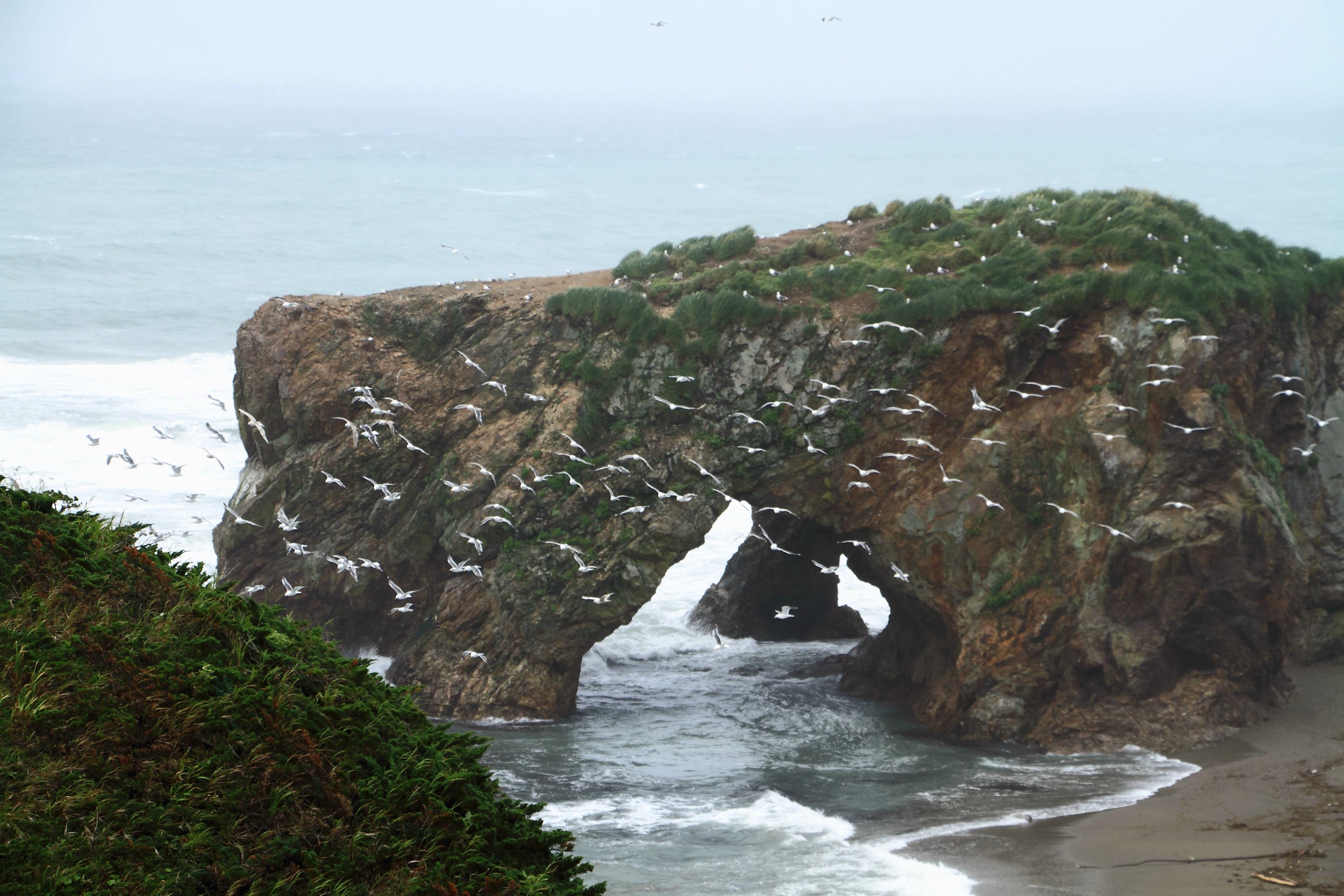 Пейзаж сахалина фото моря